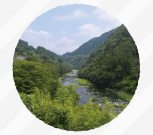 桐生酵母のイメージ写真です