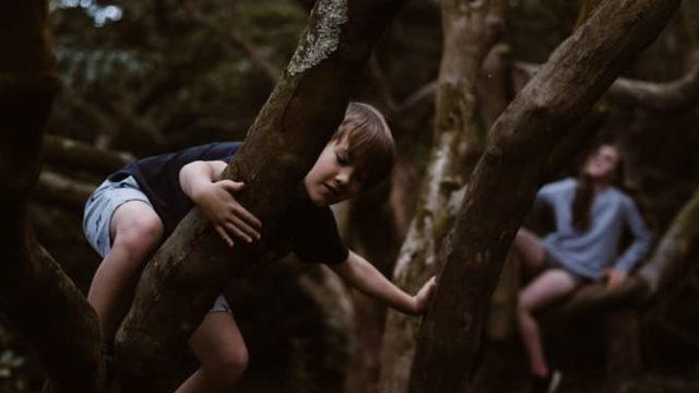 自由に木に登る子ども